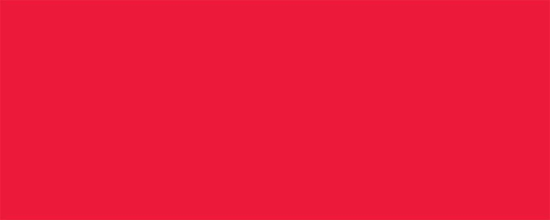 Allstar Performance Aluminum Xtreme Red 4x10