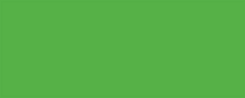Allstar Performance Aluminum Xtreme Green 4x10