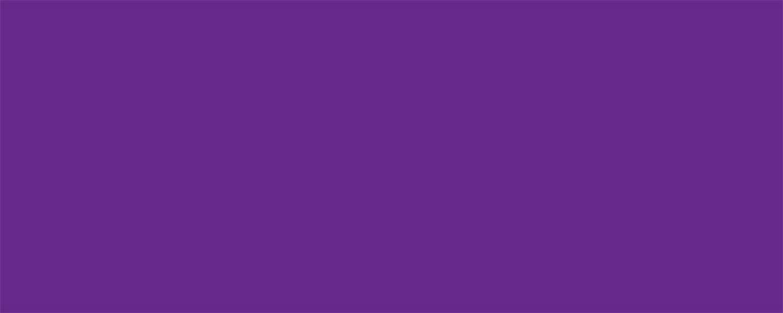 Allstar Performance Aluminum Xtreme Purple 4x10