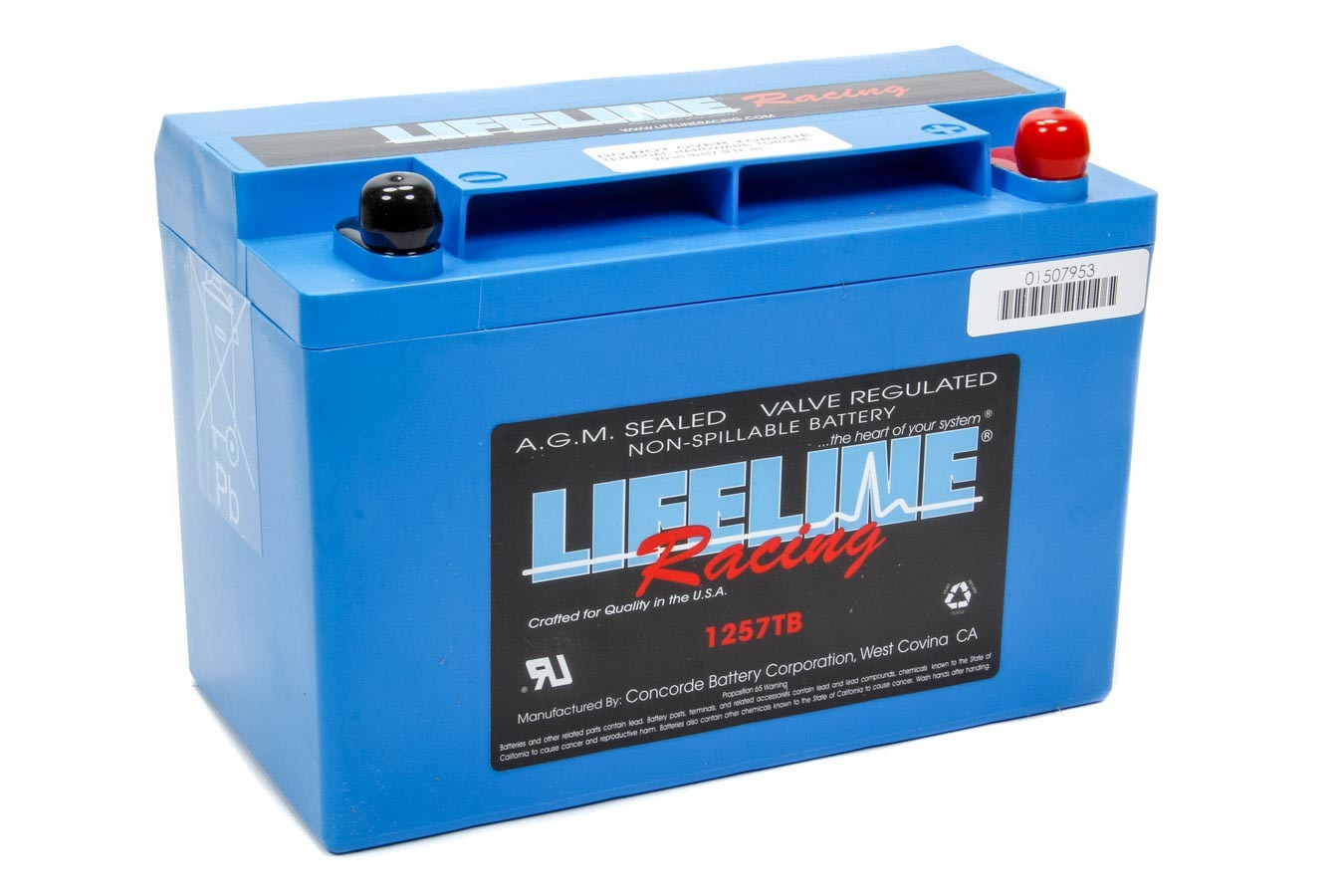 Lifeline Battery Power Cell Battery 9.75x5.25x6.875