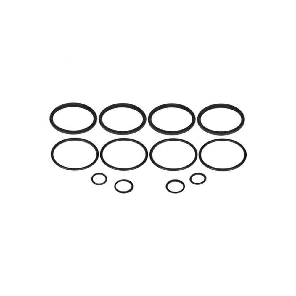O-Ring Kit - for Early Strange 4-Piston Caliper