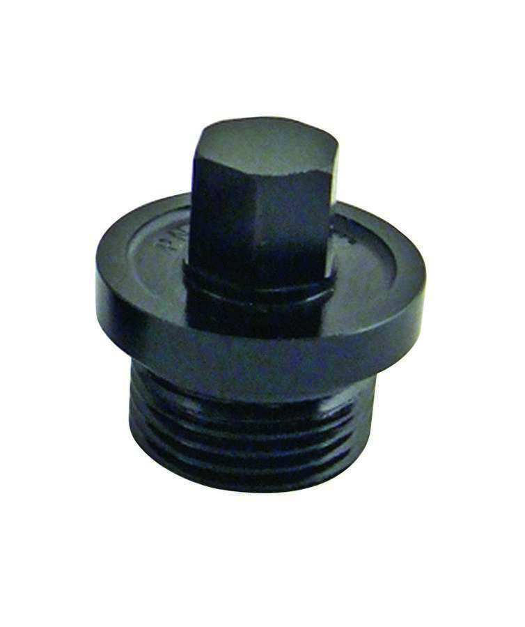 Winters Inspection Plug Small 9/16 Hex