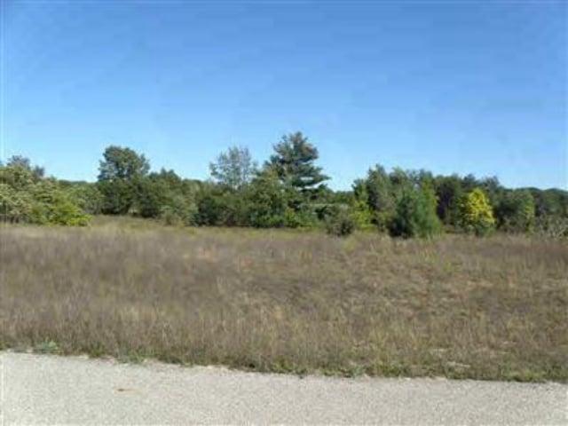 Lot10 Trim Lake View Estates  New Era, MI 49446