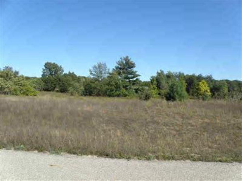 17 Trim Lake View Estates  New Era MI 49446