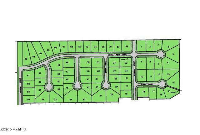 469 Seneca Ridge  Middleville MI 49333