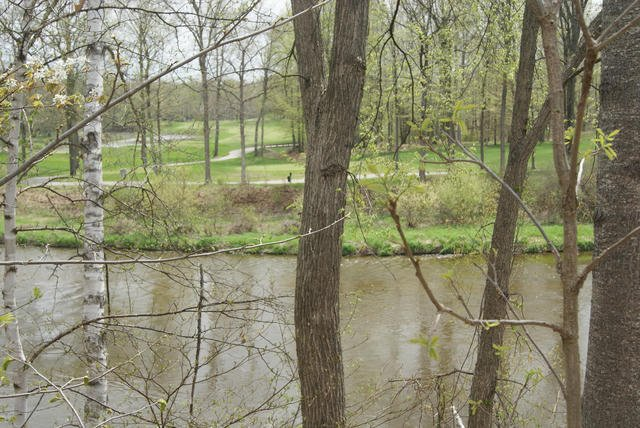 Lot 9 Whitetail Trail  Mount Pleasant, MI 48858