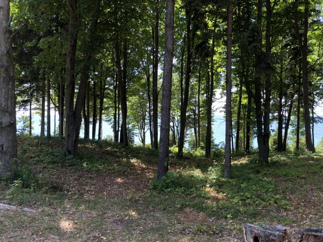 Lot 5 N Lakeview Rd Bear Lake MI 49614
