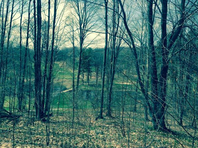 Hawk'S Spur Dr 81 Dr Bellaire, MI 49615