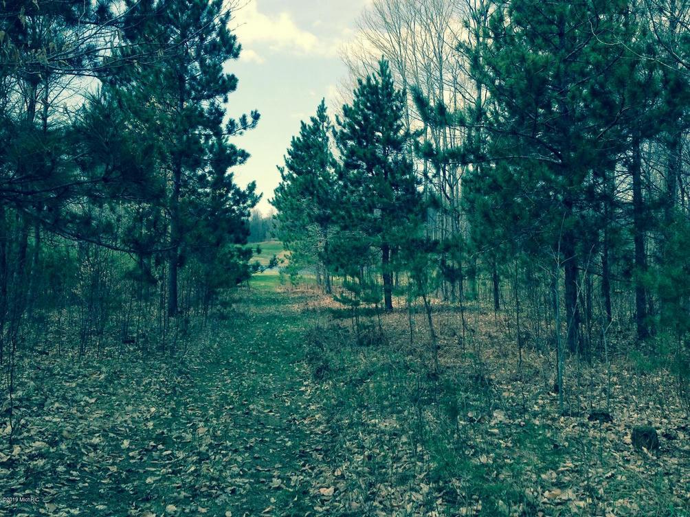 Goshawk Way 308  Bellaire, MI 49615