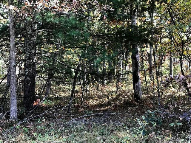 00 Chief Okemos Trail Baldwin, MI 49304