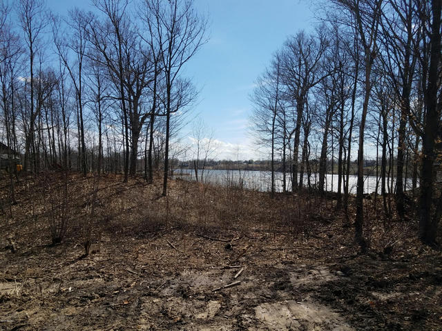 Lot 420 Lakeside Dr Perrinton, MI 48871