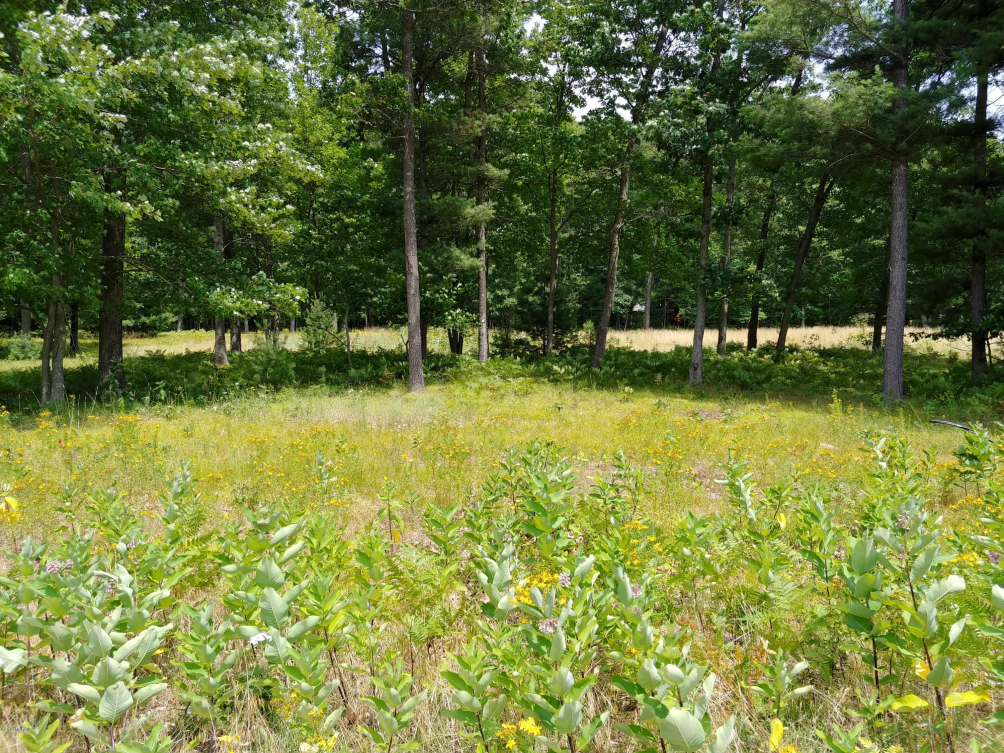 Lot 10 Angelwood Dr Muskegon MI 49445