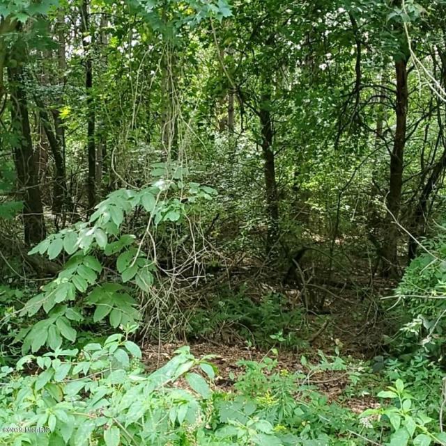 13034 Spruce Ridge Ne Dr Gowen, MI 49326