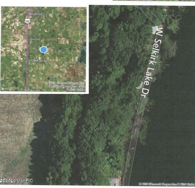 Vl W Selkirk Lake Lot 004-00 Dr Shelbyville, MI 49344