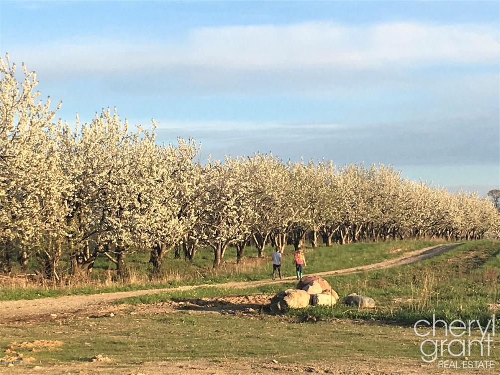 3811 Cherry Blossom 21 Ne Dr Ada, MI 49301