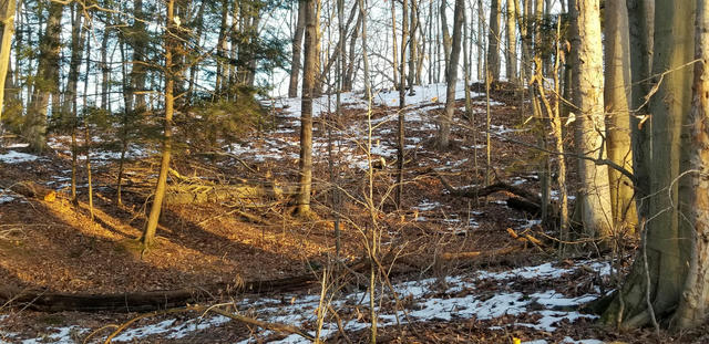 Lot 22 Sable Point Dr Shelby, MI 49455