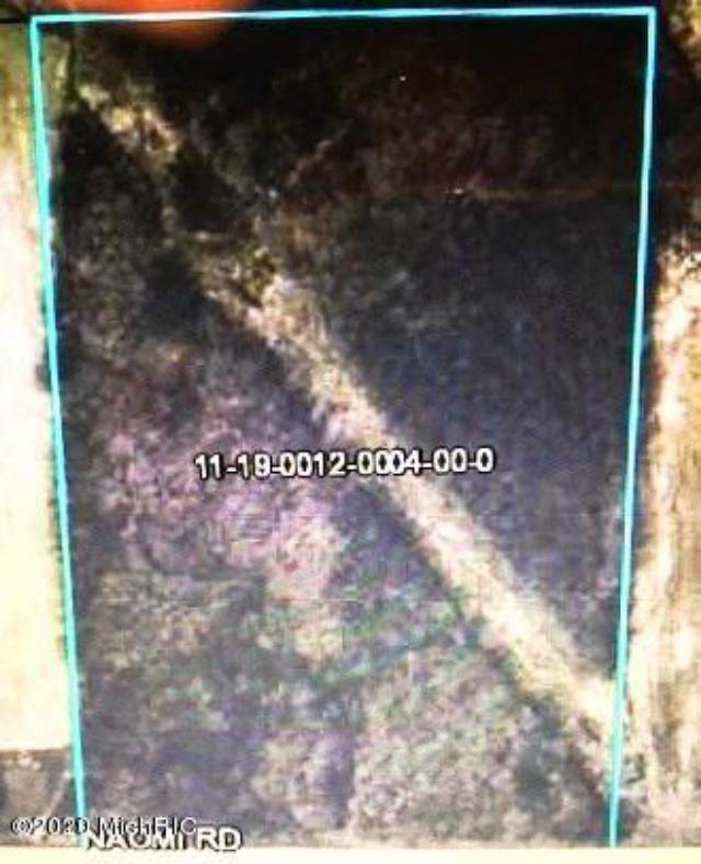 0 Naomi Rd Eau Claire, MI 49111