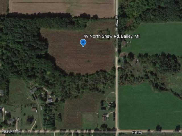 49 N Shaw Rd Bailey, MI 49303