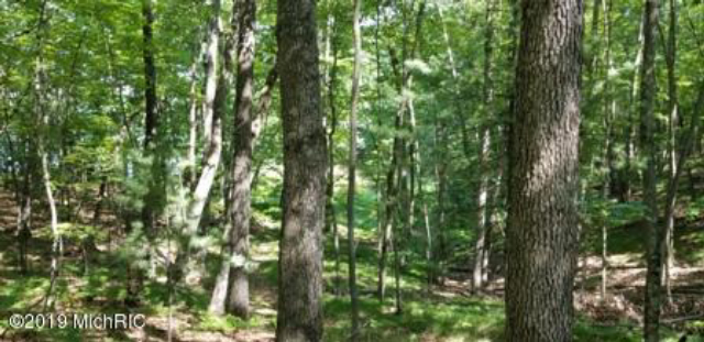 Vl Trail Of The Lakes  Baldwin MI 49304