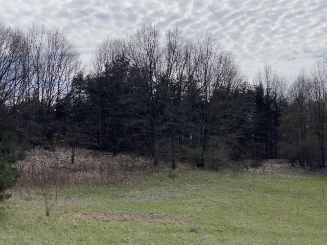 Lot I Meadow View Ln Hart, MI 49420
