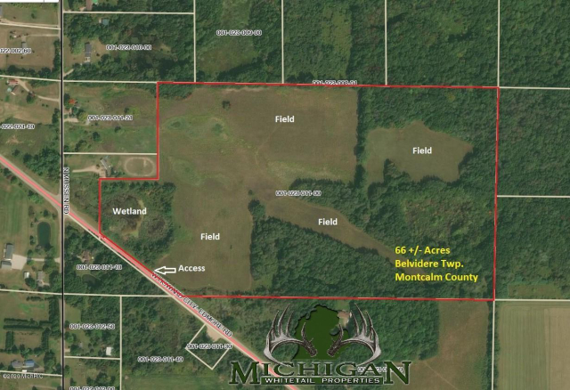 Vl Howard City Edmore Road  Six Lakes, MI 48886