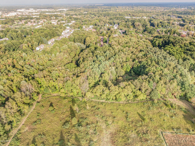 50 Acres Vacant Land S Minges Rd Battle Creek, MI 49015