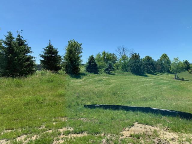10090 Prairie Grass #49 Ct Zeeland, MI 49464