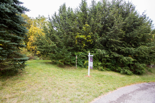 16795 Stoney Creek Ct Augusta, MI 49012