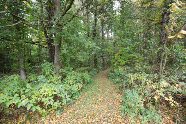 16870 Stoney Creek Ct Augusta MI 49012