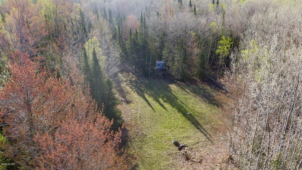 V/L 86 Acres N Fork Rd Ocqueoc MI 49759