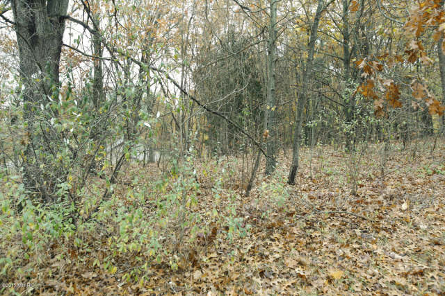 Lot 80 Arrowhead Trail Allegan, MI 49010
