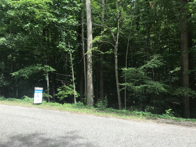 Lot 283 Oakridge Dr Perrinton, MI 48871