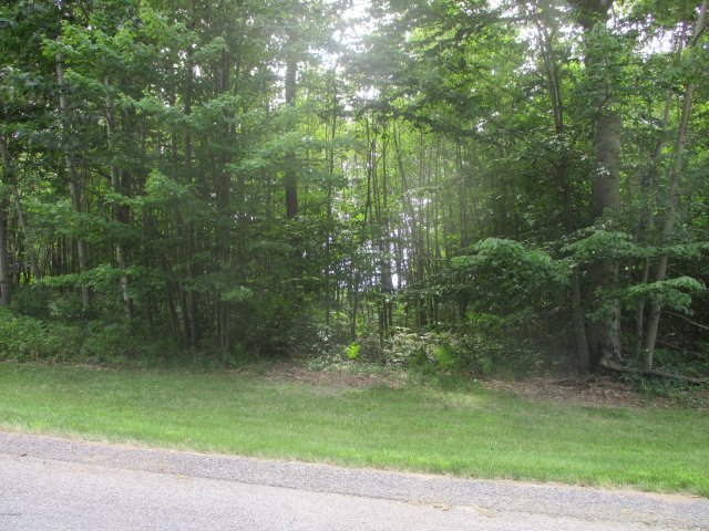 Emerald Ridge Lot #13  Onekama MI 49675