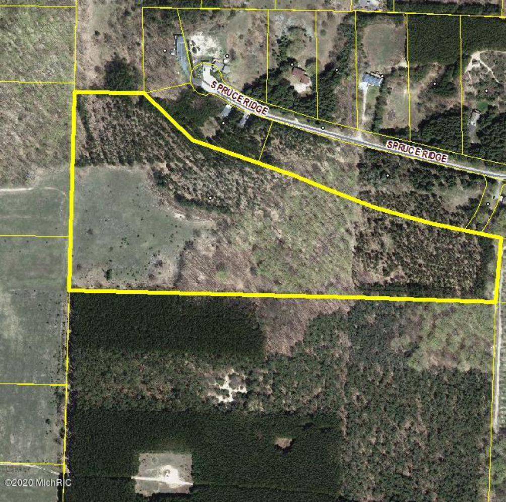 30 Acres Spruce Ridge  Bear Lake, MI 49614