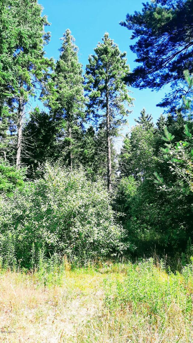 30 Acres Spruce Ridge  Bear Lake MI 49614