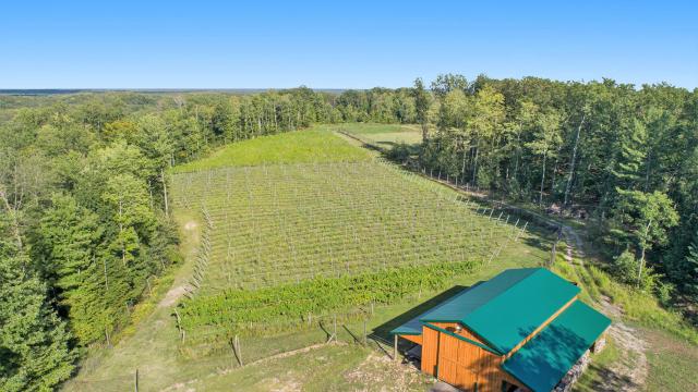 4761 Winery Way Newaygo MI 49337