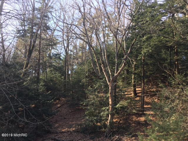 Timber Lots 5-8 Ln Shelby, MI 49455