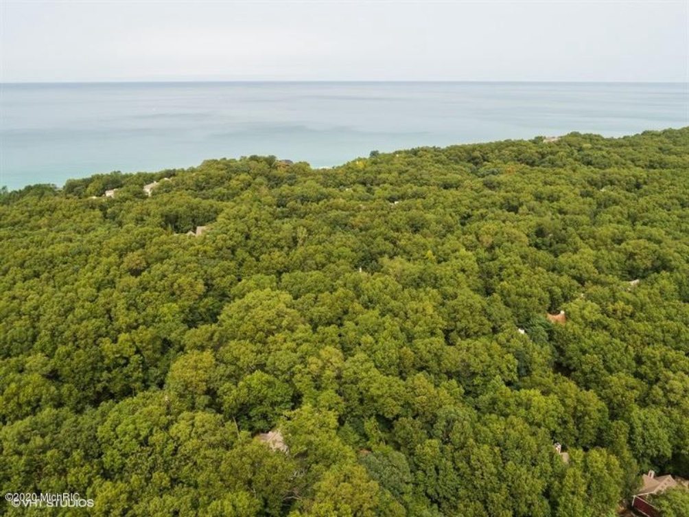 18657 Forest Beach Dr New Buffalo MI 49117