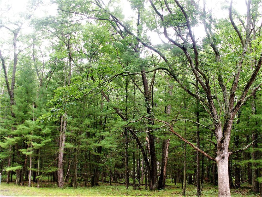 40 Meadow Wood Dr S  Manistee MI 49660