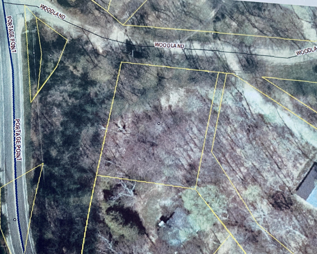Lot 20 &21 Woodland Dr Onekama, MI 49675