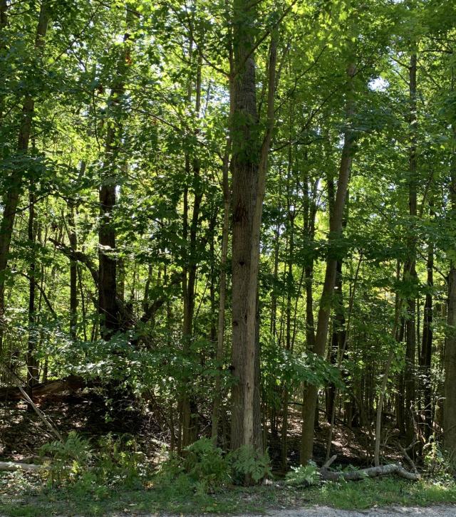 Lot 20 &21 Woodland Dr Onekama MI 49675