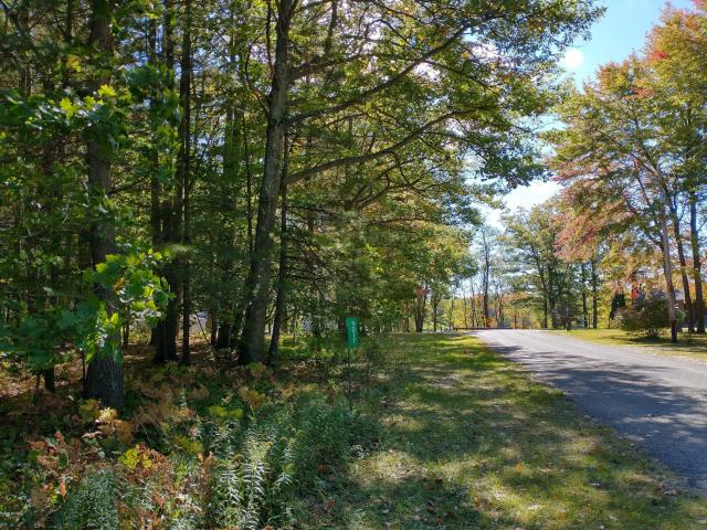Parcel A Johnson Rd Bear Lake, MI 49614
