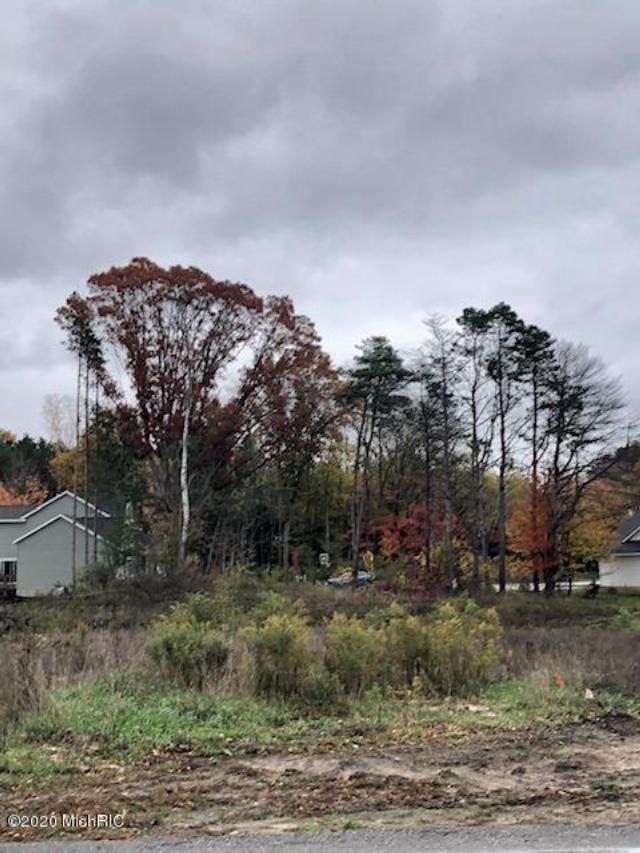 Lot 4 Arcadia Woods Dr  Spring Lake, MI 49456