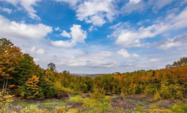 High Pines Lot 3 Trail Boyne City, MI 49712