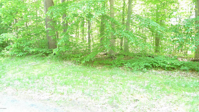 8 Lot W Kimberly Lot #8 Ln Pierson, MI 49339