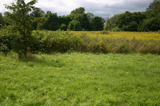 Helmer S Rd Battle Creek, MI 49015