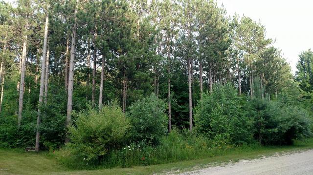 N Pine Ridge Drive 51  Ludington, MI 49431