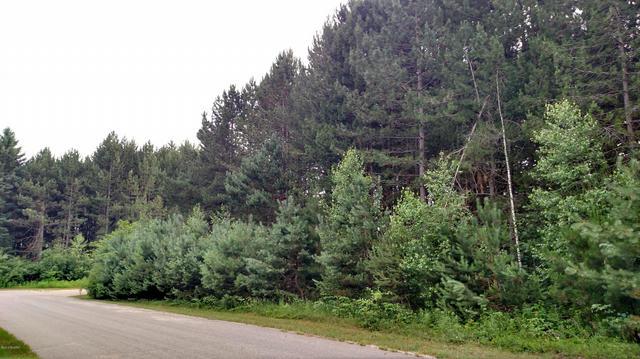 N White Birch Drive 41  Ludington, MI 49431