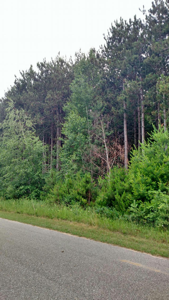 N White Birch Drive 44  Ludington, MI 49431