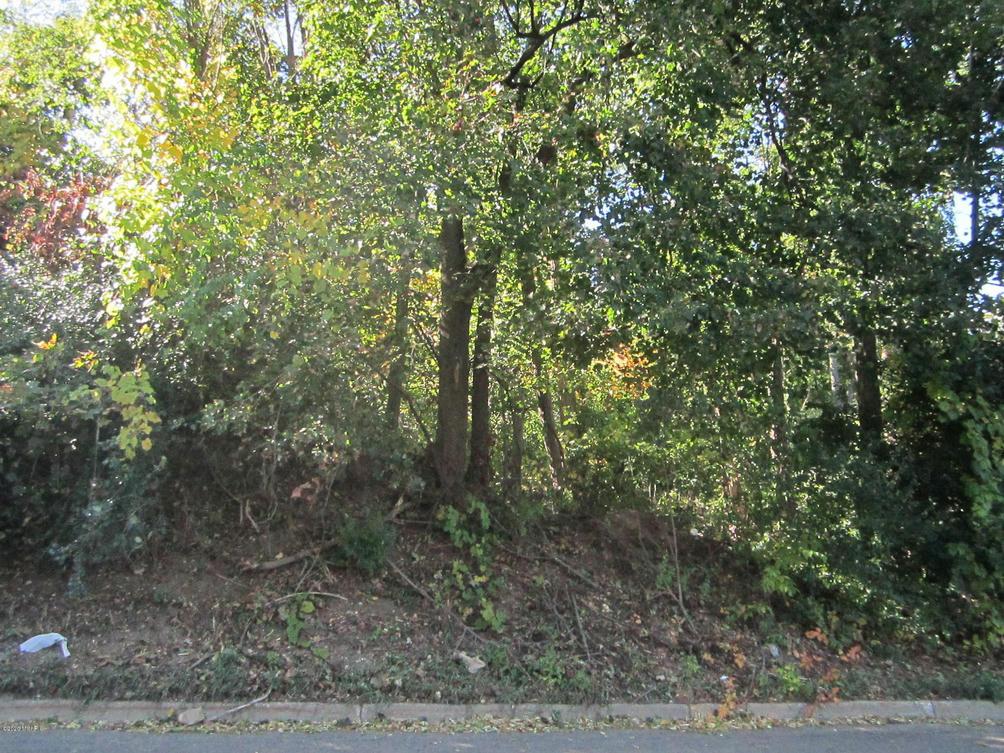 V/L Riverside Dr Battle Creek, MI 49015